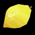 Lemony Radish and Fennel Salad