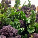 Purple sprouting broccoli!