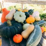 veg news 27th September